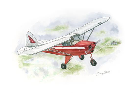 Piper Colt